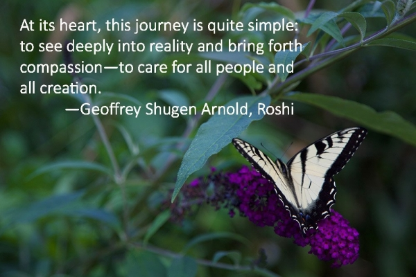 Butterly with Shugen quote 1